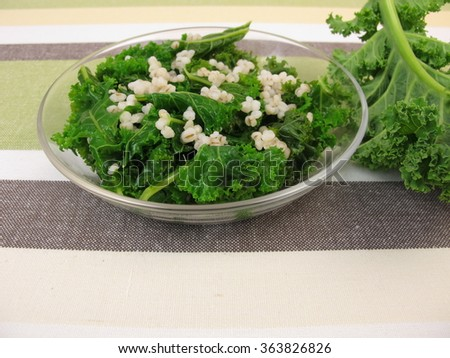 Kale salad with pearl barley - stock photo