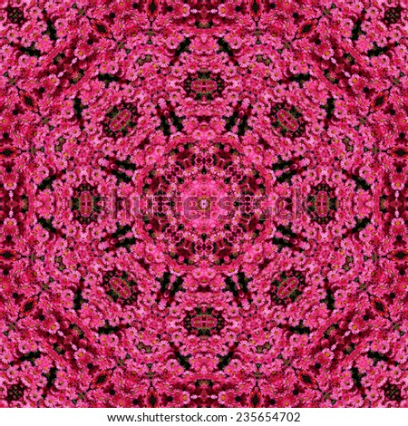 kaleidoscope created from photo aster flower - stock photo