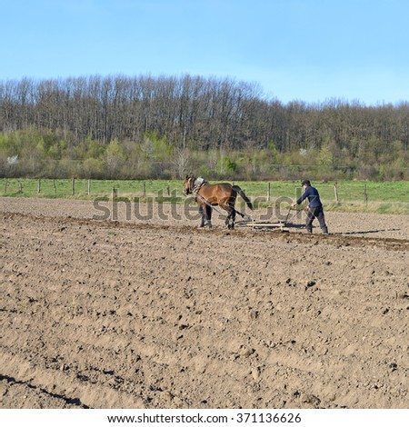 Kalush, Ukraine â?? April 23: Fallowing of a spring field by a manual plow on horse-drawn  near the town Kalush, Western Ukraine April 23, 2015