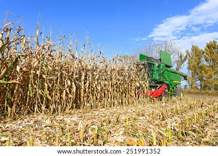 Kalush, Ukraine -OCTOBER 14: Modern John Deere combine harvesting corn  in the field near the town Kalush, Western Ukraine October 14, 2014 - stock photo