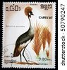 KAMPUCHEA - CIRCA 1987: A stamp printed in Kampuchea shows Grey Crowned Crane - Balearica regulorum, circa 1987 - stock photo