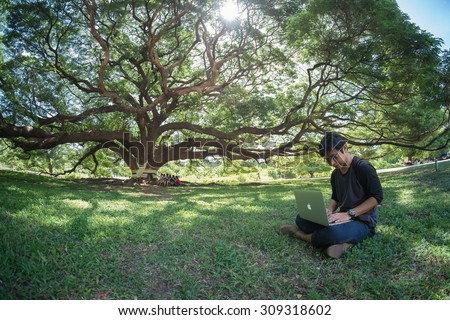 Kanchanaburi, Thailand - July 5, 2014: A man under largest monkey pod tree in Kanchanaburi, Thailand