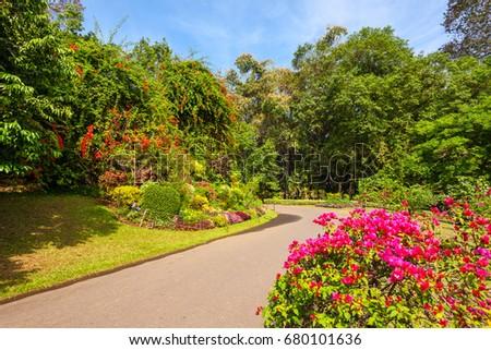 Peradeniya Stock Images Royalty Free Images Vectors Shutterstock