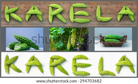 Karela bitter melon caraili composition with text illustration  - stock photo