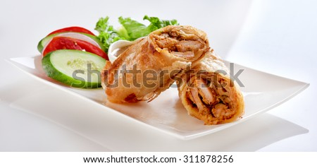 Kebab Paratha Roll - stock photo