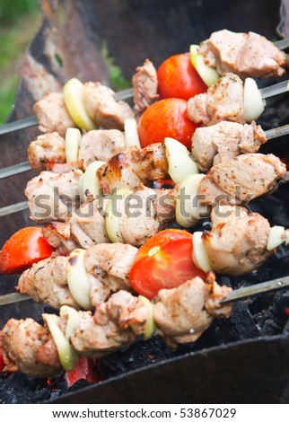 kebab with onion on the BBQ