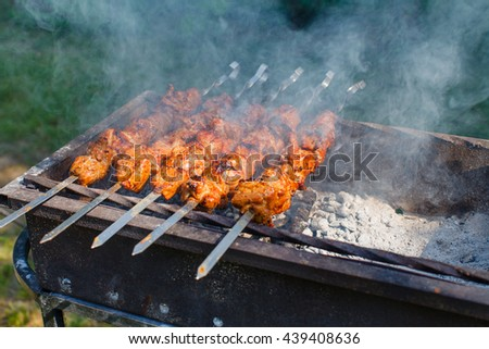 Kebabs on the grill smoke - stock photo