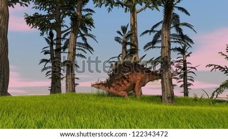 kentrosaurus in jungle - stock photo