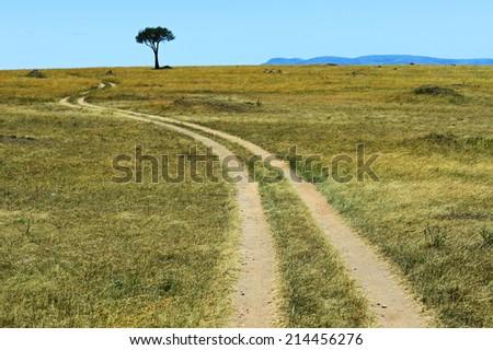 Kenyan Masai Mara savannah landscape in summer. Africa - stock photo