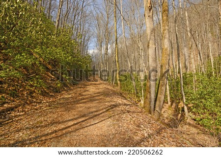 Kephart Pring Trail in the Smoky Mountains - stock photo