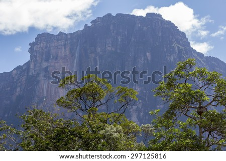 Kerepakupai Vena or Angel Falls, Salto Angel is the worlds highest waterfalls. Bolivar State. Venezuela, - stock photo