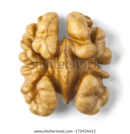 Kernel walnut isolated on the white background closeup. with clipping path - stock photo