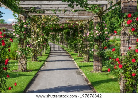 KEW, ENGLAND - MAY 22: rose pergola in the Royal Botanical Garden on May 22, 2014 in Kew. Created 1759 it is one of the oldest Botanical Gardens of the world with yearly between 1 - 2 Million visitors - stock photo