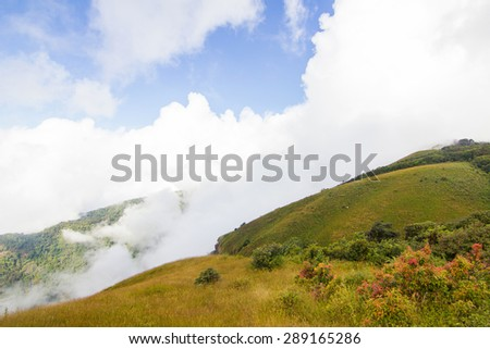 Kew mae pan nature trail at Doi Inthanon national park ,Chiangmai - stock photo