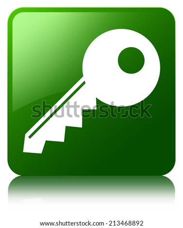 Key icon glossy green reflected square button - stock photo