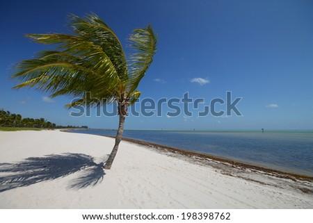 Key West Paradise - stock photo