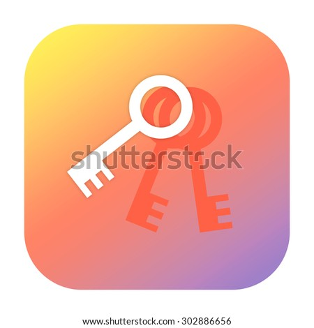 Keys icon - stock photo