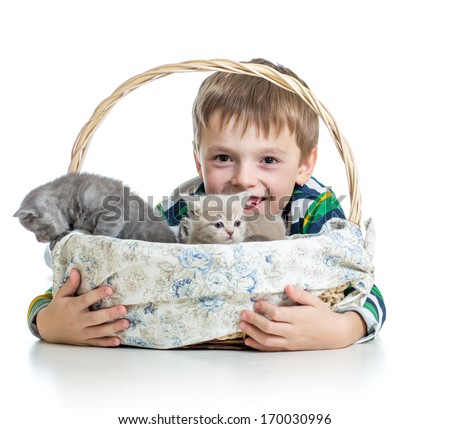 kid boy with kittens isolated on white background - stock photo