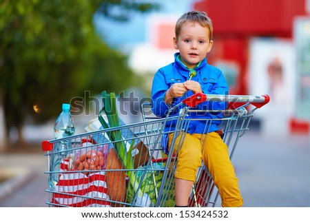 kid in trolley after shopping