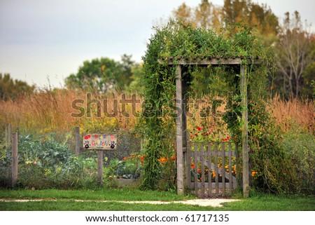 Kid's Garden in the beginning of fall season - stock photo