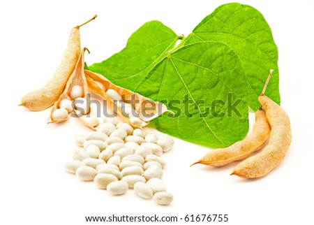 Kidney ( soy ) beans with leaves isolated on white background - stock photo