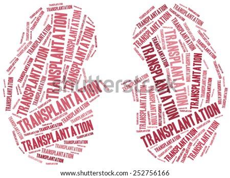 Kidney transplantation. Word cloud illustration. - stock photo