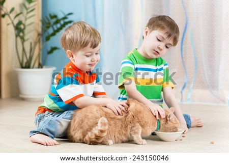 kids brothers feeding red cat at home - stock photo