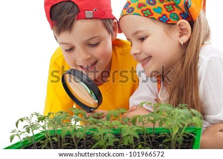 Kids learning to grow food - environmental awareness education - stock photo