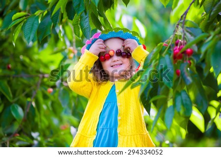 Kids picking cherry on a fruit farm. Children pick cherries in summer orchard. Toddler kid eating fresh fruit from garden tree. Little farmer girl with berry in a basket. Harvest time fun for family - stock photo