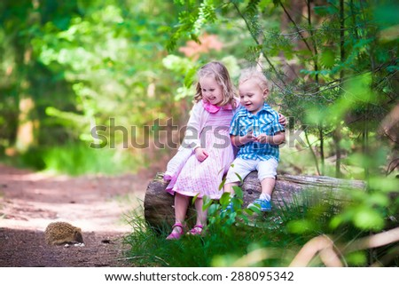 Kids watching a hedgehog. Children hiking in the forest. Family outdoor fun in summer. Little girl and boy play with a wild animal. Hike with toddler child and baby. Preschooler kid in the park. - stock photo