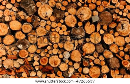 Kindling wood - stock photo