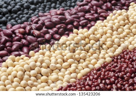 kinds of beans, red beans, soybeans, red kidney beans, black beans