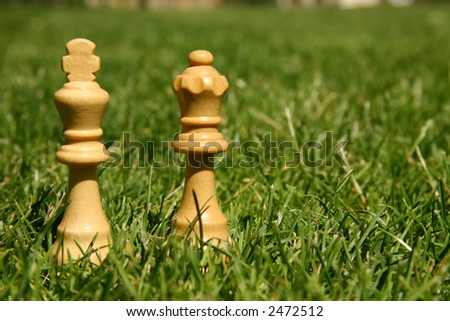 King and queen chess pieces on green grass - stock photo