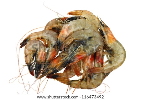 King tiger shrimps raw in pile isolated on white - stock photo