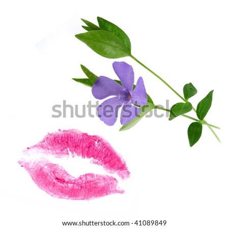 kiss and flower - stock photo