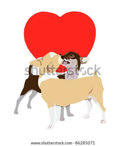 Kissing chihuahua on red heart and white background - stock photo