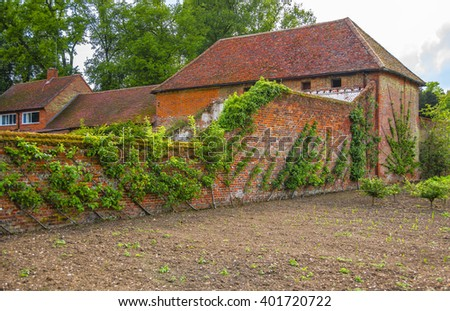 Kitchen garden in Audley End House in Essex in England. It is a medieval county house. Now it is under protection of the English Heritage. - stock photo