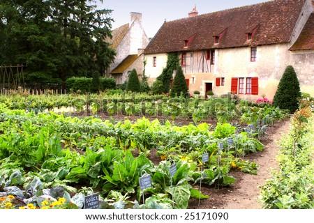 kitchen garden, vegetable garden near old france cottage - stock photo