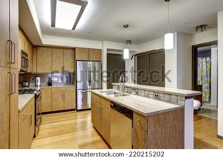 Kitchen interior in modern apartment. Kitchen island with sink