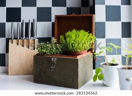Kitchen utensils, decor and kitchenware in the modern kitchen interior close-up. Home plants on a windowsill. - stock photo