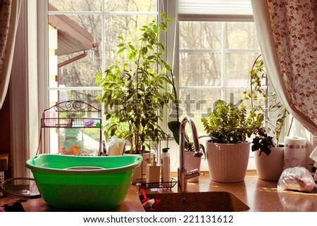 kitchen window garden view plants - stock photo
