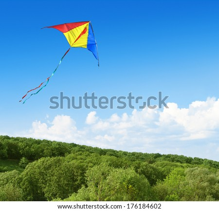 Kite flying in the sky over the forest - stock photo