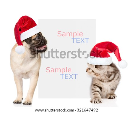 Kitten and pug puppy with red christmas hats peeking from behind empty board. isolated on white background - stock photo