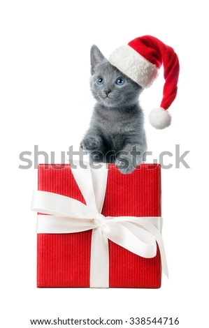Kitten in santa hat with red gift box, isolated on white background - stock photo