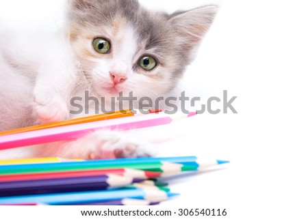 kitty with colored pencils - stock photo