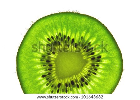 kiwi in the water