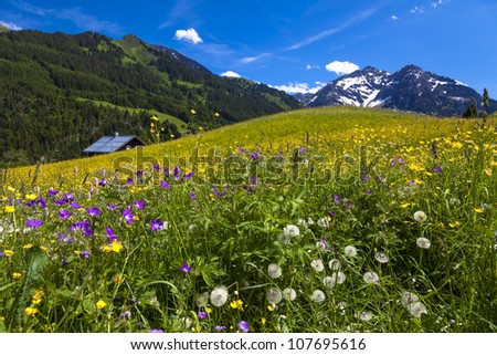 Kleinwalsertal (little Walser valley) is a part of Austria - stock photo