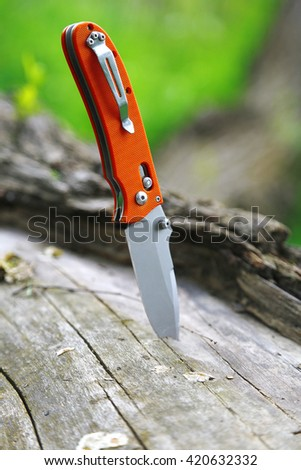 Knife in the tree - stock photo
