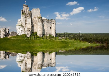 knight's castle over the lake