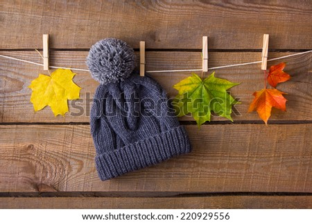 Knitted hat and autumn leaves - stock photo
